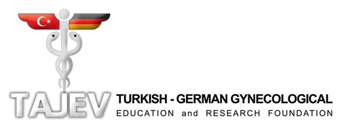 Turkish-German logo